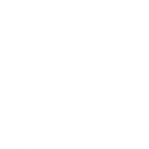 Connect Icon White